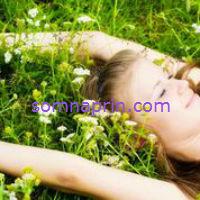 Somnaprin versus Other Natural Sleep Aids